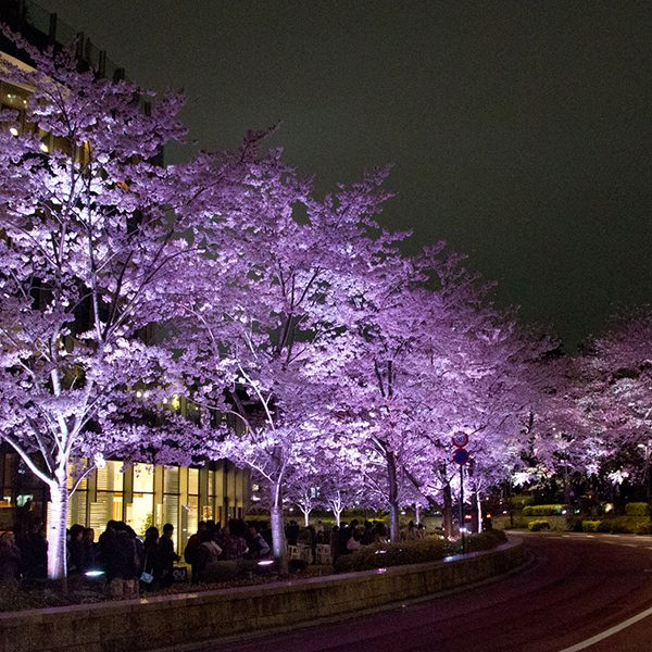 赤坂観光スポット
