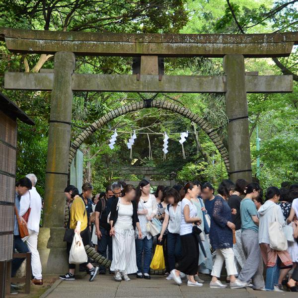 赤坂氷川神社の「夏越の大祓式」に参加してみた